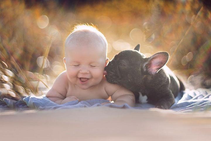 fotos amistad bebé y perro