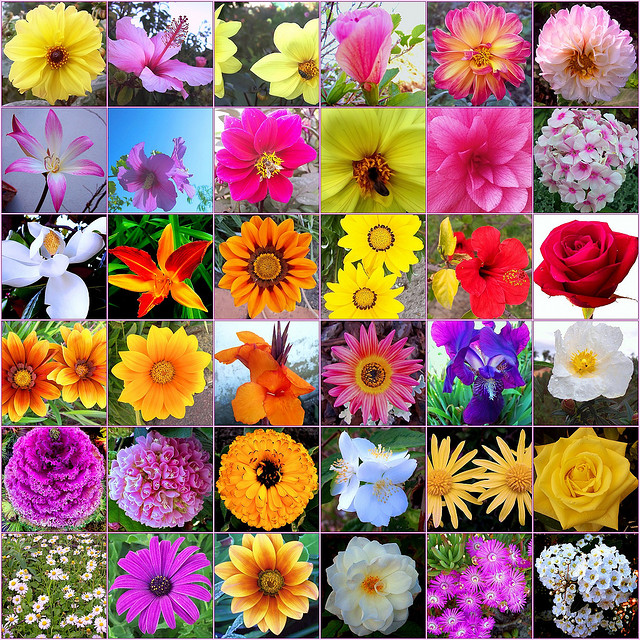 Fotos de primavera para inspirarte