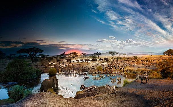 fotos áfrica