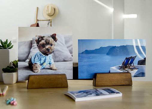 Revela tus fotos online con la calidad Hofmann