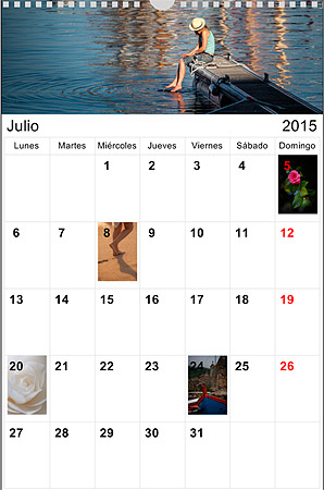 Calendario de Pared Planning para anotar cosas importantes a mano